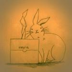 [ウサギあるある2]角が好き