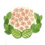 [おすわりなお花]葉っぱに囲まれふんわりと