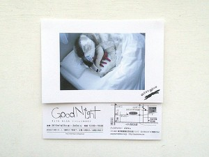 ookamigocco 'Good Night'